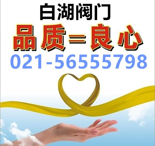上海白湖阀门制造雷竞技raybet官网