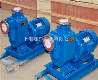 直联式自吸泵50ZXL20-30直联式清水自吸泵