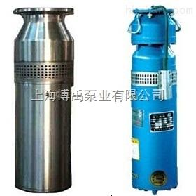 喷泉水泵_不锈钢喷泉潜水泵QS-厂家