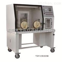 上海厌氧培养箱厂家