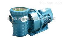 泳池循环水泵厂家