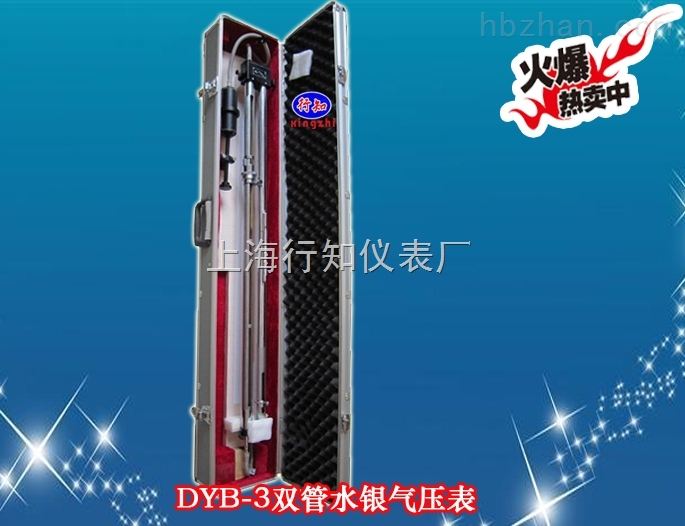 双管水银压力表-DYB-3型双管水银压力表