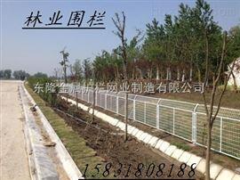 绿化园林护栏网