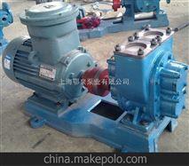防爆型圆弧齿轮油泵
