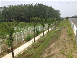 园林围栏网.园林围栏网厂家.园林围栏网价格