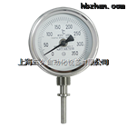 WSS-471双金属温度计