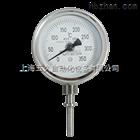 双金属温度计WSS-571