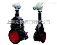 电动铸铁材质闸阀