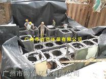 东莞雨水收集利用系统雨水处回用装置工程