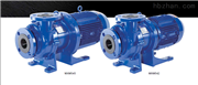 MXM系列iwaki 易威奇磁力泵