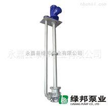 YWP双管不锈钢污水液下泵