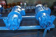 SK直联水环式真空泵