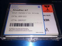WHATMAN代理200纳米无机膜氧化铝膜AAO膜板6809-5022