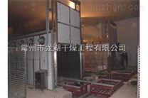 不锈钢CT-C-II热风循环烘箱
