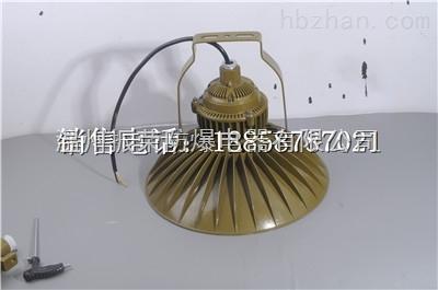 振荣圆形LED防爆灯