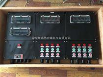 8回路带总开关控制防水防尘防腐配电箱