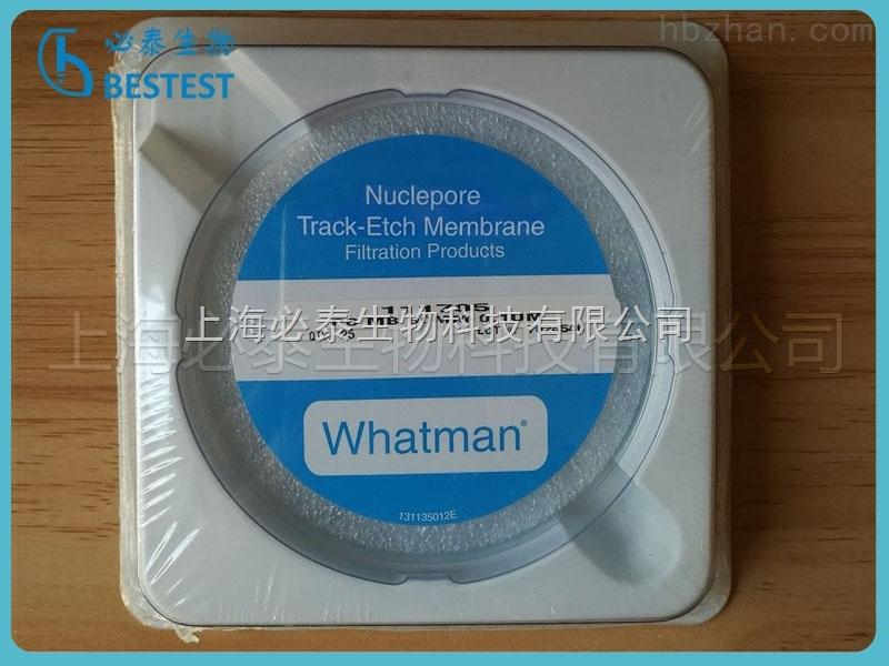 Whatman Nuclepore径迹蚀刻膜 0.1um 90mm