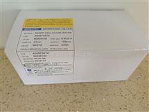ADVANTEC白底黑格膜含吸收垫47mm直径0.45um孔径A045F047A