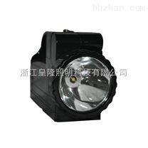 手提式强光工作灯IW5500批发