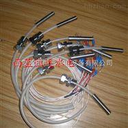 WZP-200WZP-200铂热电阻-陕西水电设备厂专业订做热电阻