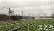 蔬菜大棚喷灌系统,温室大棚喷灌系统