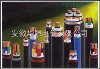 VV22 3*25+1*16 電力電纜