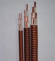 柔性礦物絕緣電纜YTTW 3*50+1*25