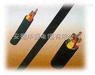 NH-YJV-1KV-3*4/耐火電纜