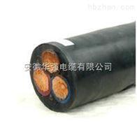 山東JHS-3*6+1*4防水電纜