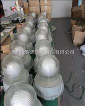 ZY8101-250W防眩泛光灯厂家