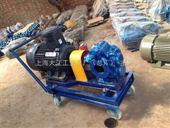 2CY-18/6-22CY齿轮式输油泵