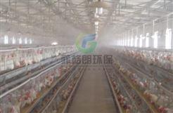 郑州饲养场员工喷雾消毒通道系统/智能高效喷雾消毒系统