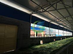山西大型养殖场喷雾消毒设备/消毒杀菌效果好/喷雾消毒设备技术