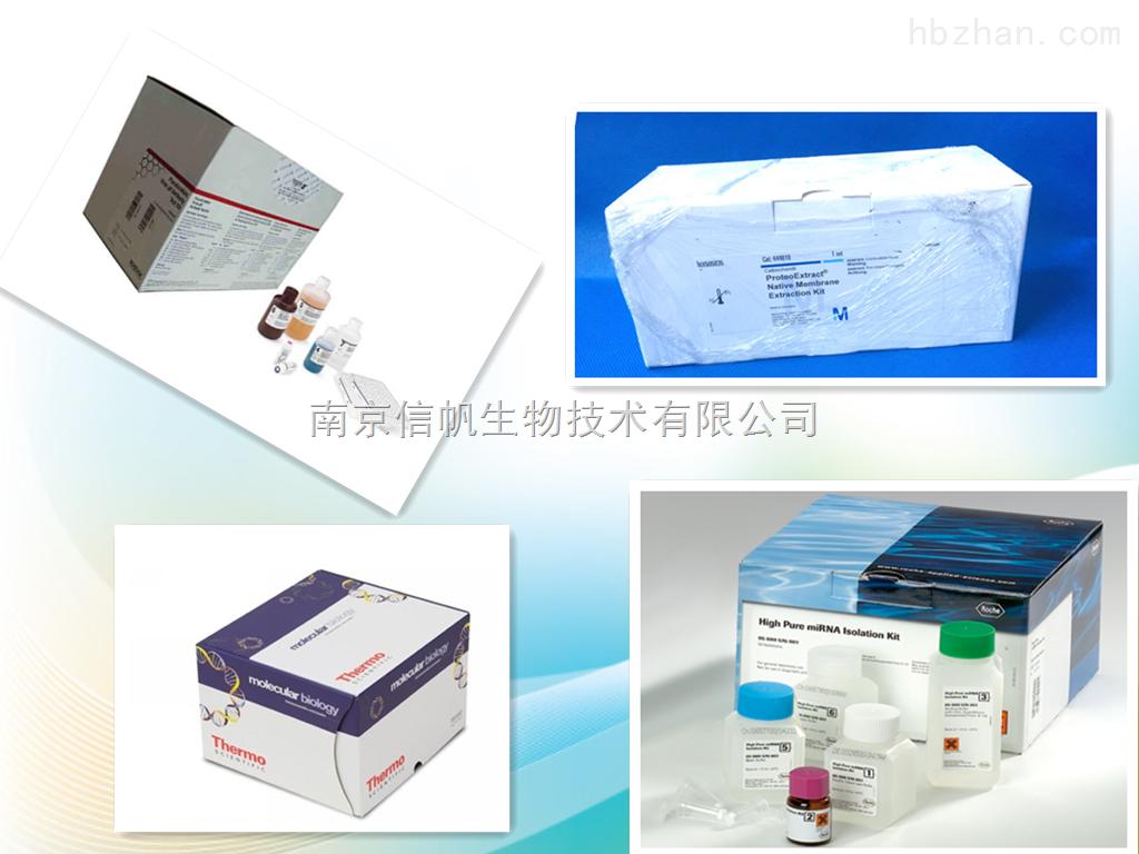 人iNOS elisa试剂盒,诱导型一氧化氮合酶检测