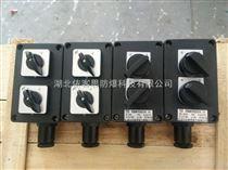 ZXF8030/51-D长沙防爆防腐照明开关