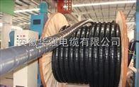 ZC-YJV22-3*50+1*25 鎧裝交聯電纜