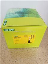Bio-Rad伯乐TGX FastCast Acrylamiae预混丙烯酰胺溶液161-0173