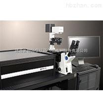 超高分辨率专用荧光染剂,荧光蛋白