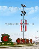 安徽朗越能源城市建设专用太阳能灯