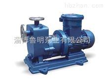 磁力自吸泵安装