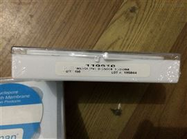 110656 110657whatman黑色聚碳酸酯膜Nulclepore膜孔徑0.2um