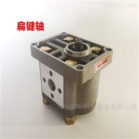 CBN-G306齿轮泵液压泵