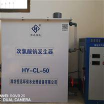 次氯酸钠发生器 自来水厂的消毒设备