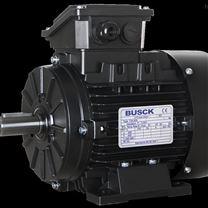 瑞典BUSCK电机