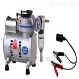 圣斯特   R300DC便攜式直流電真空泵