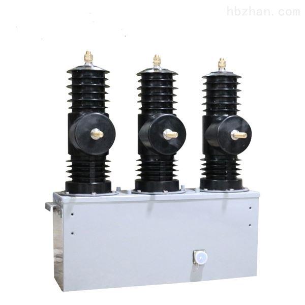 10KV柱上高压永磁真空断路器