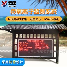 YT-YL-100景区负氧离子监测仪器