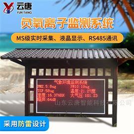 YT-YL-100(新款)负离子检测仪