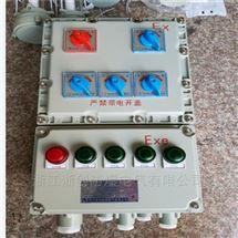 户外消防防爆应急照明配电箱BXM51-6K
