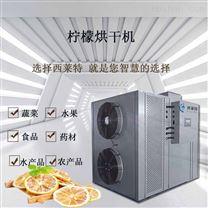 广州大型空气能柠檬烘干机